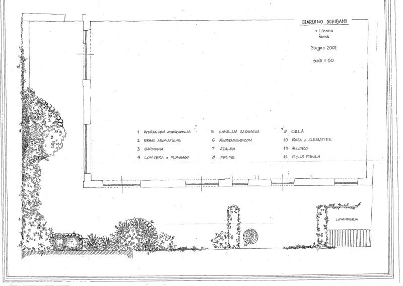 Giardino Terrazza Roma - francesca paolucci delle roncole